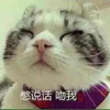 我爱彭燕华